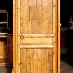 Door with shutter