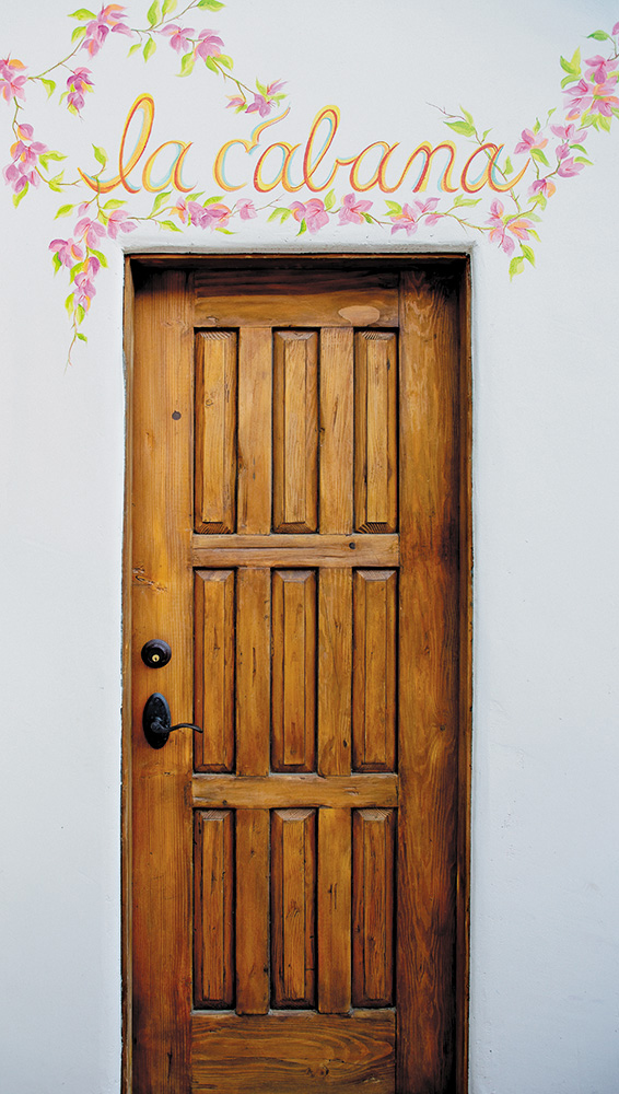 & Antique Mexican Cabana Door - La Puerta Originals